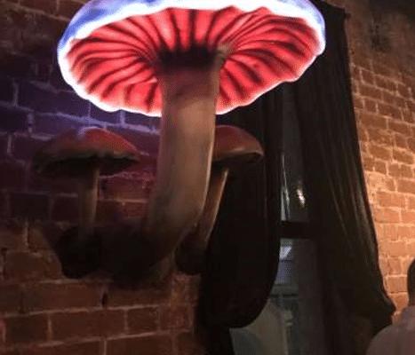 Effektlampe